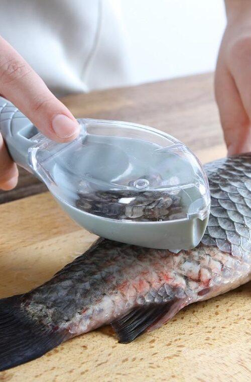 Fiskskinnsgarvare
