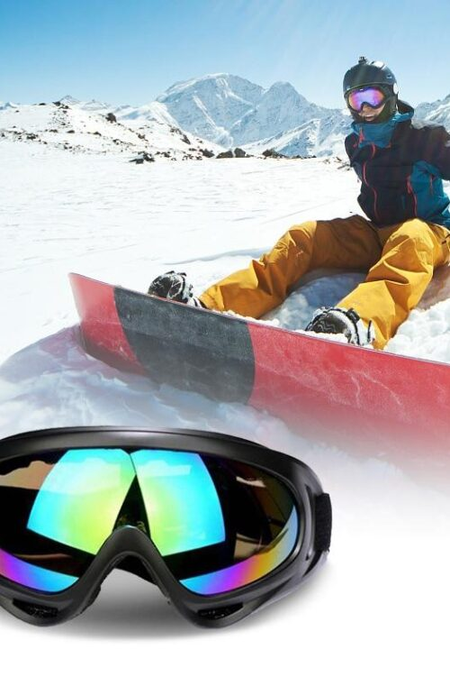 Skidglasögon / Snowboardglasögon
