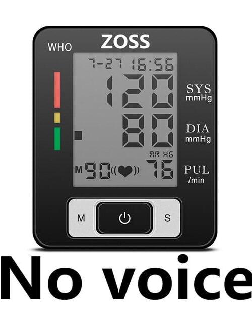 no voice
