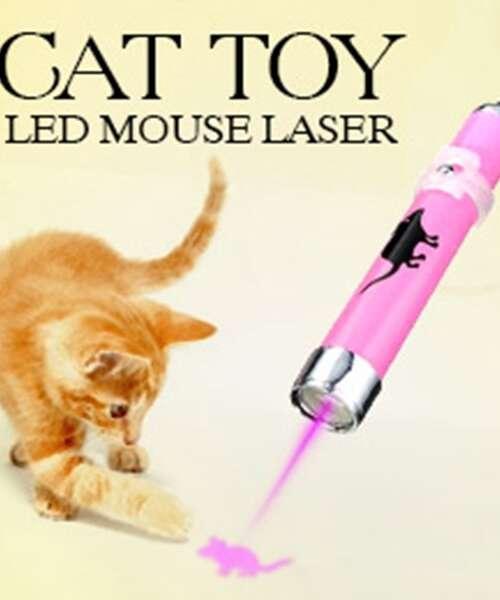 Laserpekare (Katt)